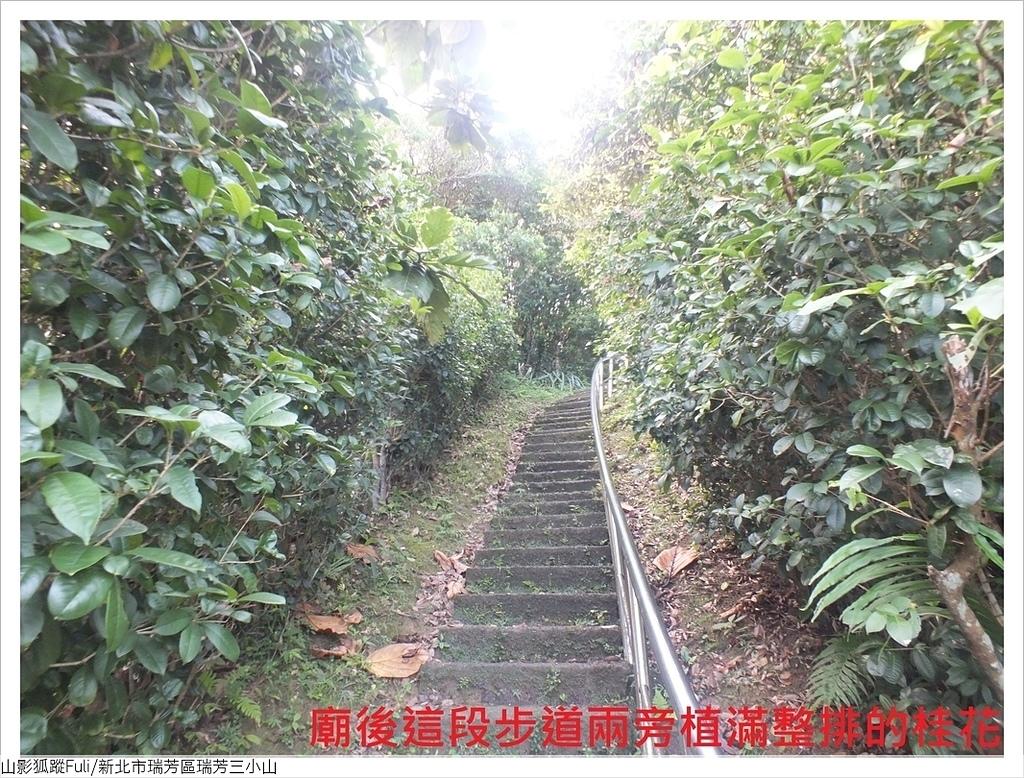 瑞芳三小山 (6).JPG - 瑞芳三小山