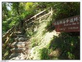 內洞森林遊樂區:內洞森林遊樂區 (42).jpg