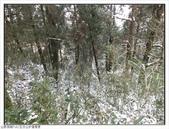 五分山步道雪景:五分山雪景 (48).jpg