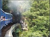 CK124蒸汽火車:CK124 (9).jpg