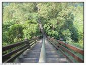 中央嶺森林步道:中央嶺森林步道 (1).jpg