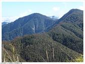 山毛櫸國家步道:038.JPG