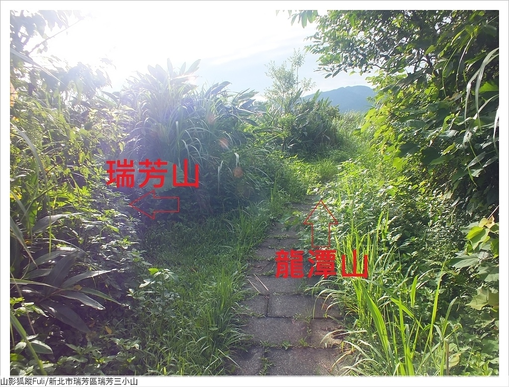 瑞芳三小山 (25).JPG - 瑞芳三小山