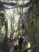 加里山登山步道:加里山 (20).jpg