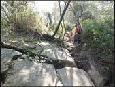 加里山登山步道:加里山 (26).jpg