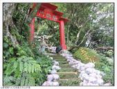 玉京山峭壁精靈:玉京山步道 (15).jpg