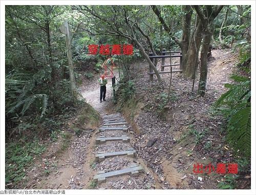 碧山步道 (15).JPG - 碧山步道