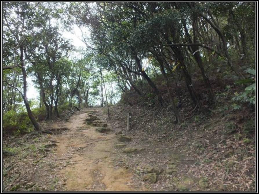 小粗坑聚落、古道 :小粗坑 (14).jpg