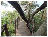 中央嶺森林步道:中央嶺森林步道 (21).jpg