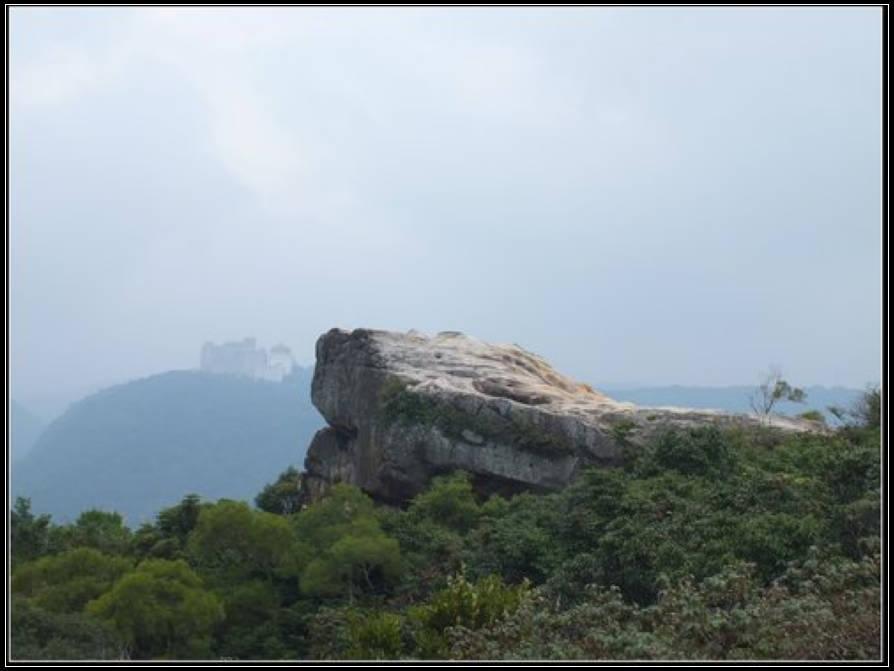 丹鳳山、照明寺、軍艦岩:丹鳳山 (15).jpg