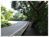 鳶山彩壁:鳶山彩壁 (6).JPG