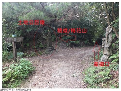 碧山步道 (28).JPG - 碧山步道