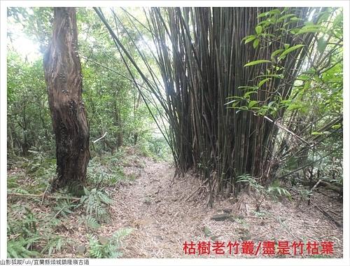 隆嶺古道 (5).JPG - 隆嶺古道
