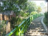 飛鳳山步道:飛鳳山步道 (17).jpg
