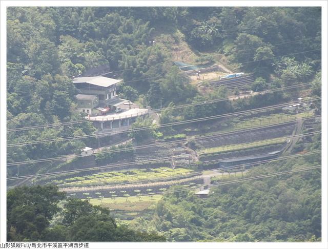 平湖西步道 (76).JPG - 平湖西步道
