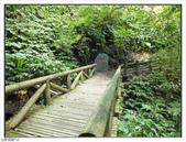棲蘭森林遊樂區:棲蘭森林遊樂區 (53).jpg
