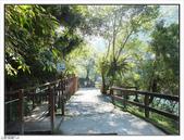 內洞森林遊樂區:內洞森林遊樂區 (18).jpg