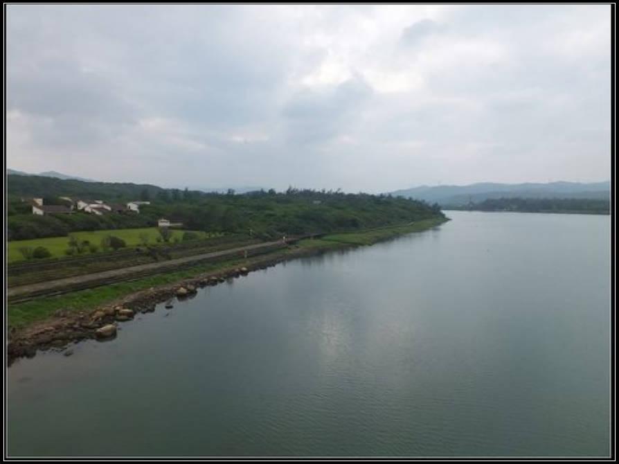 雙溪河邊野百合:雙溪河 (15).jpg