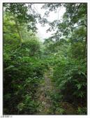 五指山登山步道:五指山登山步道 (50).jpg