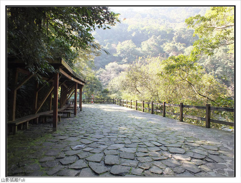 內洞森林遊樂區:內洞森林遊樂區 (25).jpg