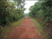 羊稠坑森林步道:羊稠坑步道 (17).jpg
