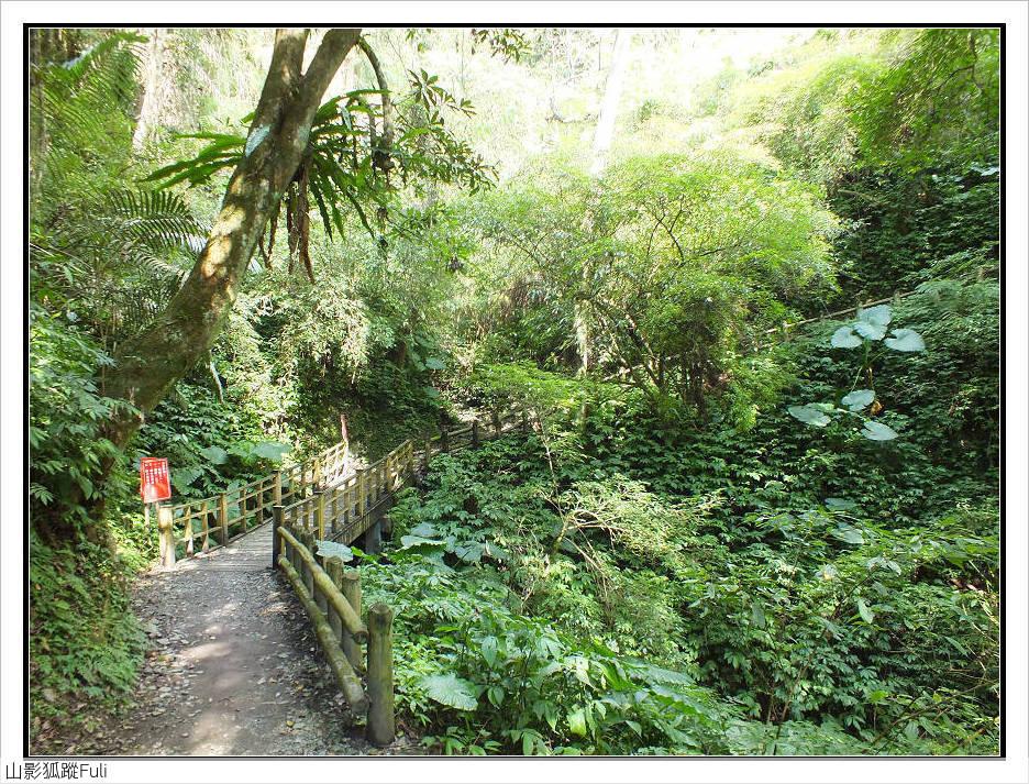 棲蘭森林遊樂區:棲蘭森林遊樂區 (42).jpg