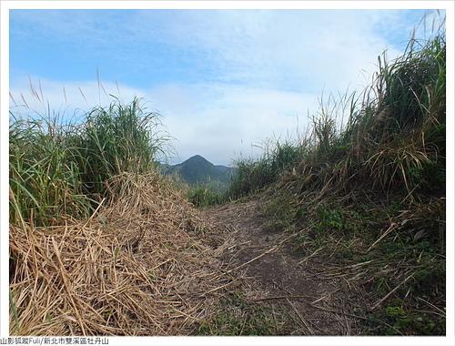 牡丹山 (75).JPG - 牡丹山