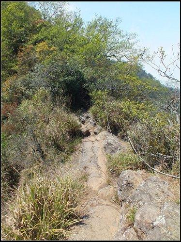 加里山登山步道:加里山 (28).jpg