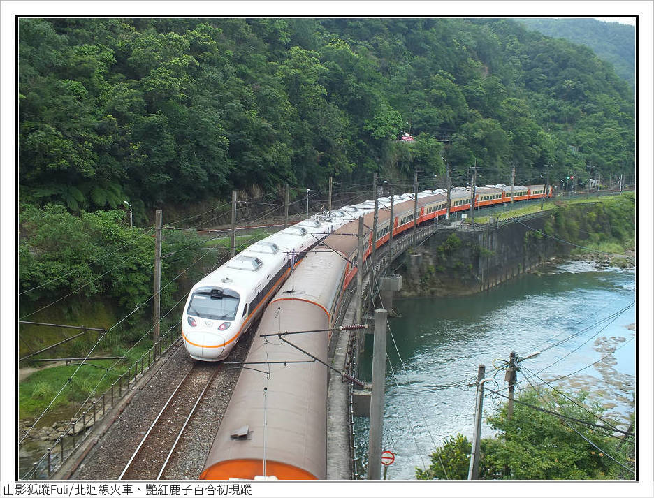 火車、艷紅鹿子百合 (1).jpg - 火車、艷紅鹿子百合