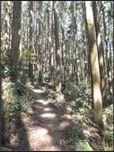加里山登山步道:加里山 (16).jpg