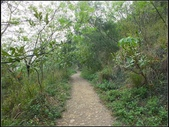 環保公園步道:環保公園 (11).jpg