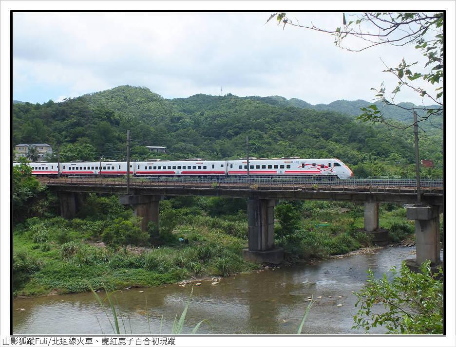 火車、艷紅鹿子百合 (2).jpg - 火車、艷紅鹿子百合