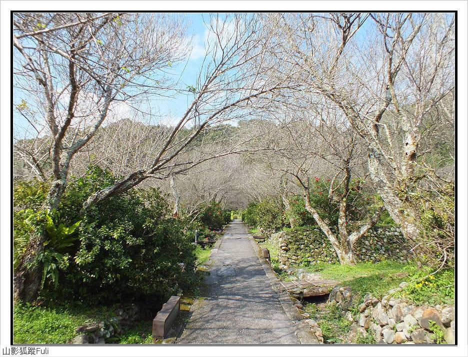 棲蘭森林遊樂區:棲蘭森林遊樂區 (15).jpg