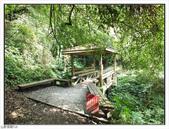 棲蘭森林遊樂區:棲蘭森林遊樂區 (45).jpg