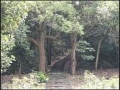 仁和、金獅、漢卿步道 :漢卿步道  (5).jpg
