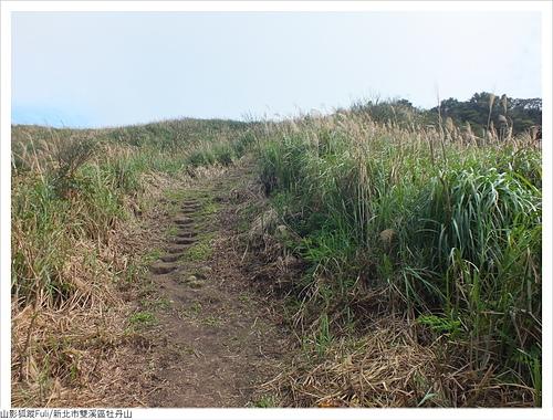 牡丹山 (70).JPG - 牡丹山