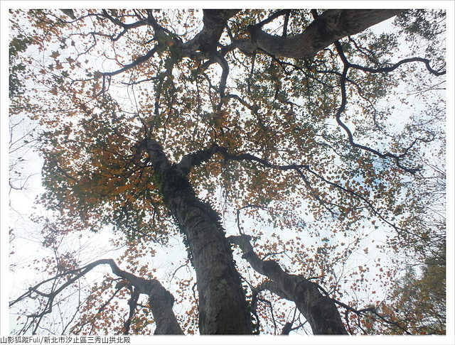 拱北殿三秀山 (11).JPG - 三秀山拱北殿