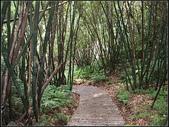東和步道:東和步道 (8).jpg