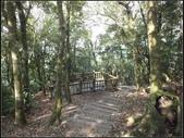 大狐狸爬上東眼山:東眼山 (9).jpg
