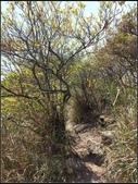 加里山登山步道:加里山 (27).jpg