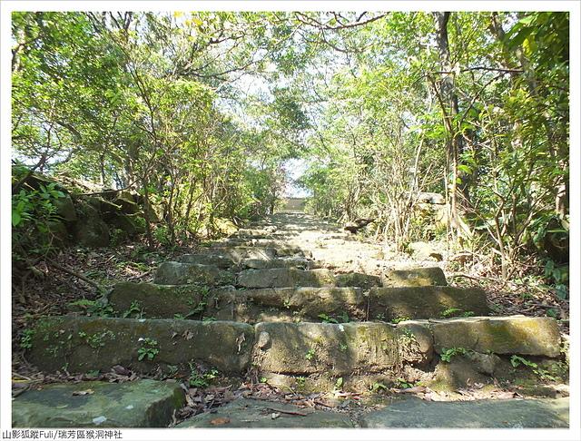 猴洞神社 (27).JPG - 猴洞神社鐘萼木