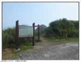 巨齒稜紅星杜鵑花:巨齒稜紅星杜鵑 (3).jpg