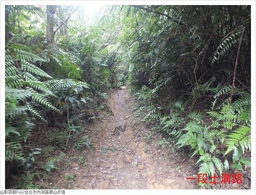 碧山步道 (12).JPG - 碧山步道