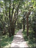 崎頭步道:崎頭步道 (12).jpg
