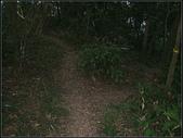 潤濟宮步道:潤濟宮步道 (10).jpg