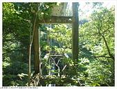 畝畝山/石硿子古道:石硿子古道畝畝山 (8).JPG