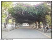 屏東市中山公園:中山公園 (3).jpg