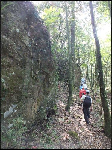 加里山登山步道:加里山 (18).jpg