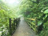 雨霧五分山:五分山稜線步道 (6).JPG