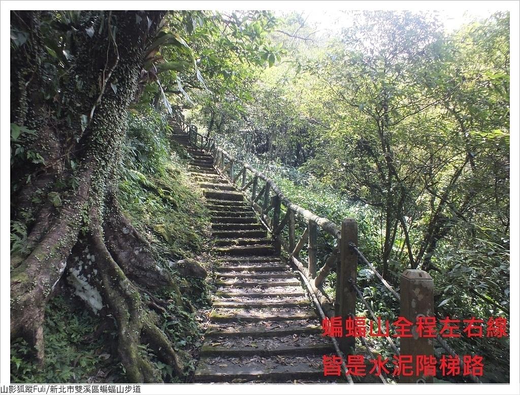 蝙蝠山步道 (7).JPG - 蝙蝠山步道